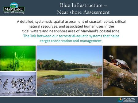 A detailed, systematic spatial assessment of coastal habitat, critical natural resources, and associated human uses in the tidal waters and near-shore.