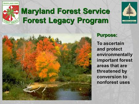 Purpose: To ascertain and protect environmentally important forest areas that are threatened by conversion to nonforest uses Maryland Forest Service Forest.