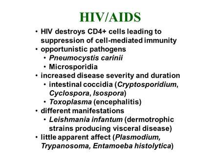 Pneumocystis carinii Pneumocystis carinii is an important