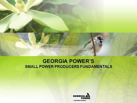 GEORGIA POWERS SMALL POWER PRODUCERS FUNDAMENTALS.