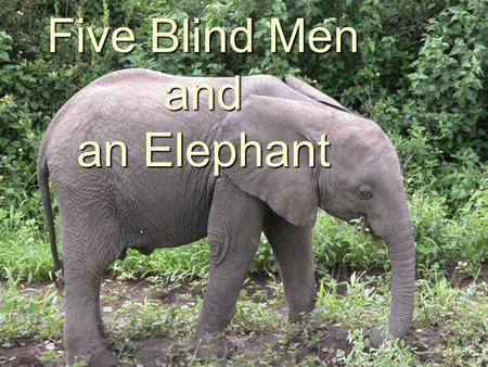 Five Blind Men and an Elephant. Five blind men were taken to see an elephant. Each examined it as best he could, and described it in terms of his experience.