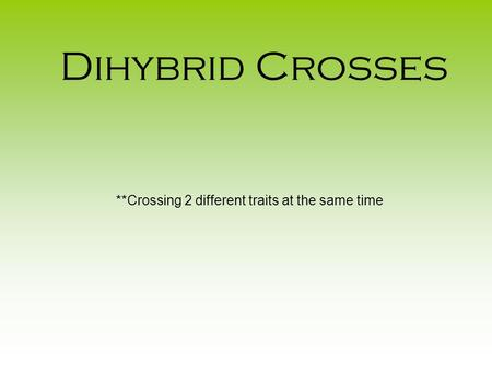 Dihybrid Crosses **Crossing 2 different traits at the same time.