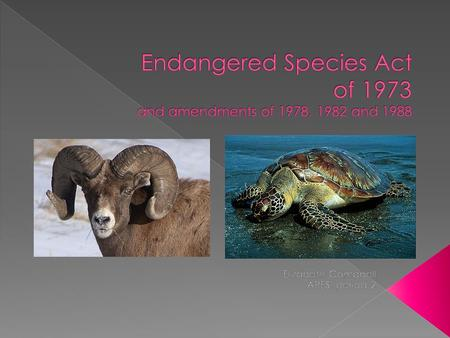 Signed on December 1973 and provides for the conservation of species that are endangered or threatened throughout all or significant portion of their.