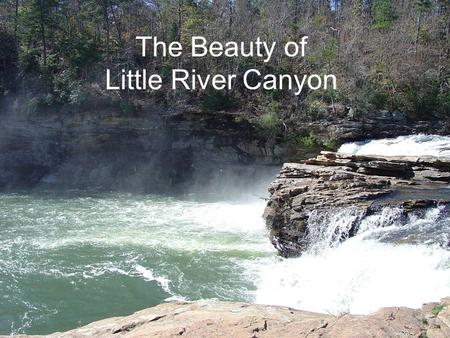 The Beauty of Little River Canyon. There can be no greater issue than that of conservation in this country. Theodore Roosevelt.