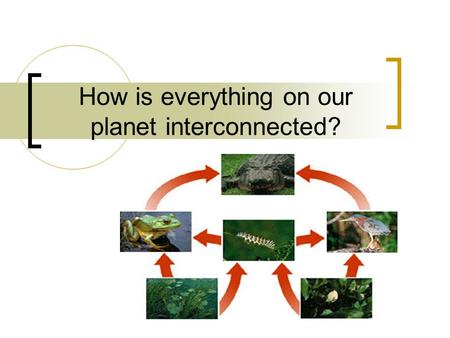 How is everything on our planet interconnected?. Layers of Our Planet Geosphere: solid part of earth that consists of soil, rock and sediments. Atmosphere: