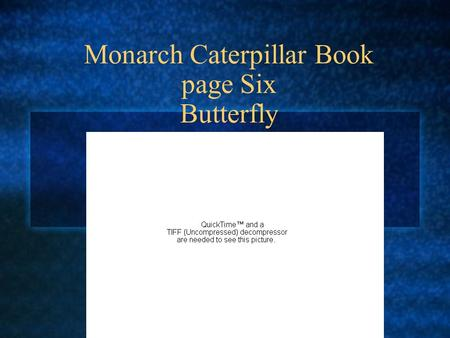 Monarch Caterpillar Book page Six Butterfly. Butterfly At first the butterflys wings are very small and its abdomen very large. The fluid gets pumped.