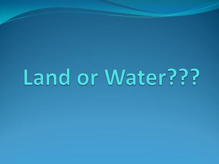Land or Water???.