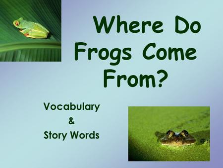 Where Do Frogs Come From? Vocabulary & Story Words.