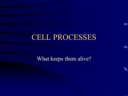CELL PROCESSES What keeps them alive?.