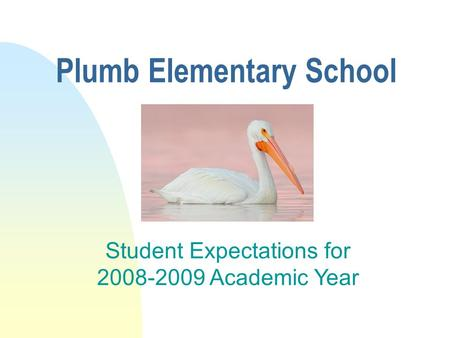 Plumb Elementary School Student Expectations for 2008-2009 Academic Year.