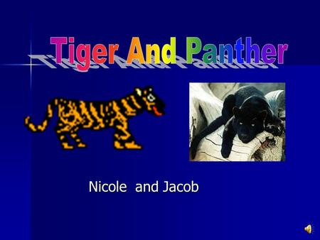 Tiger And Panther Nicole and Jacob.