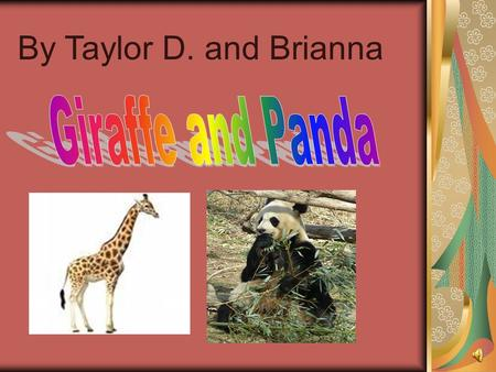 By Taylor D. and Brianna Giraffe and Panda
