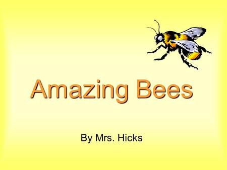 Amazing Bees By Mrs. Hicks.
