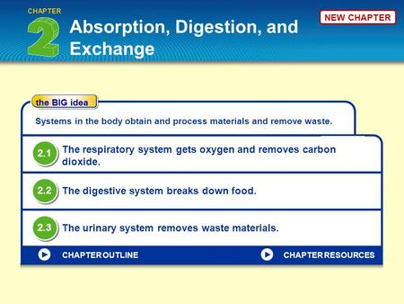 NEW CHAPTER Absorption, Digestion, and Exchange CHAPTER the BIG idea CHAPTER OUTLINE Systems in the body obtain and process materials and remove waste.