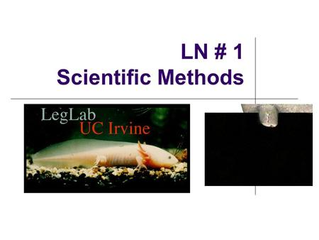 LN # 1 Scientific Methods