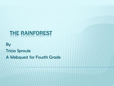 By Tricia Sproule A Webquest for Fourth Grade. The rainforest is important to the ecosystem. It is the home to unique animals and plants. It also helps.