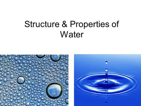 Structure & Properties of Water