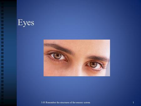 Eyes 3.03 Remember the structures of the sensory system 1.