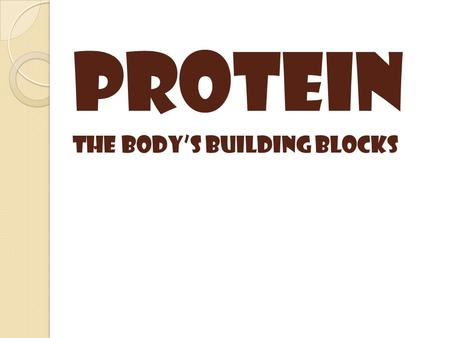 Protein The body's building blocks.