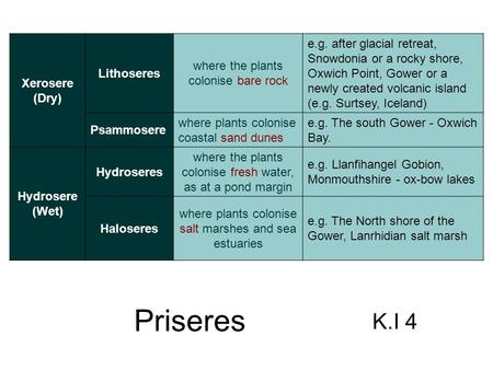 Plant successions from bare ground are known as priseres