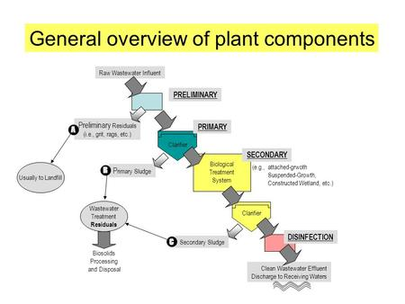 General overview of plant components