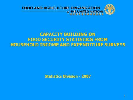 1 CAPACITY BUILDING ON FOOD SECURITY STATISTICS FROM HOUSEHOLD INCOME AND EXPENDITURE SURVEYS Statistics Division - 2007.