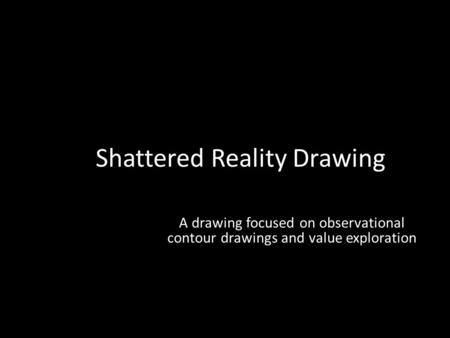 Shattered Reality Drawing A drawing focused on observational contour drawings and value exploration.
