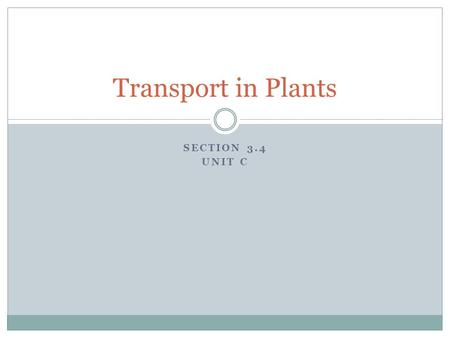 Transport in Plants Section 3.4 Unit C.
