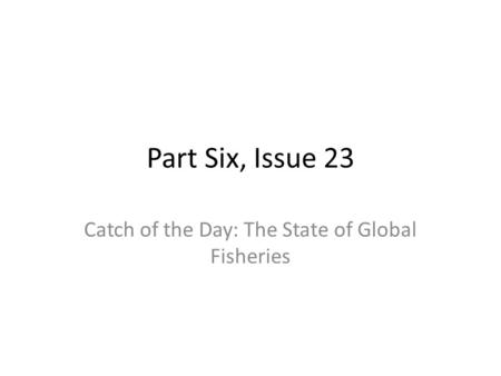 Catch of the Day: The State of Global Fisheries