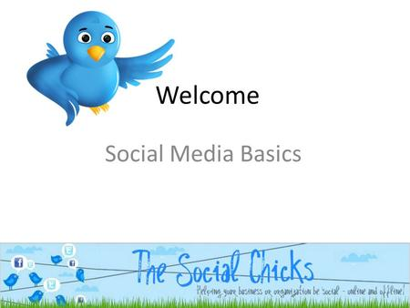 Welcome Social Media Basics. Who: Three social chicks with a passion for engagement, collaboration and building relationships online and