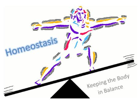 Keeping the Body in Balance. Homeostasis in the Body Previously, we've talked about a few methods cells use to keep their internal environments constant.