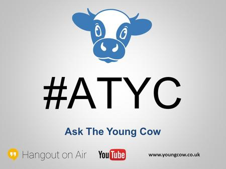 #ATYC Ask The Young Cow www.youngcow.co.uk. What's the difference between Marketing, Digital Marketing & Internet Marketing? www.youngcow.co.uk If you're.