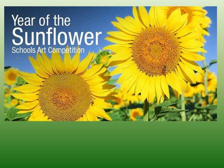 2015, Year of the Sunflower, Schools competition Hayes Garden World Summer Competition this year focuses on primary schools across the UK. If you are.
