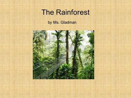 The Rainforest by Ms. Gladman. Rainforests are all over the world.