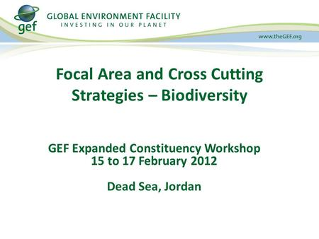 Focal Area and Cross Cutting Strategies – Biodiversity GEF Expanded Constituency Workshop 15 to 17 February 2012 Dead Sea, Jordan.