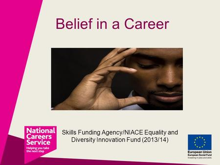 Belief in a Career Skills Funding Agency/NIACE Equality and Diversity Innovation Fund (2013/14)