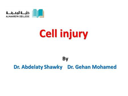 Cell injury By Dr. Abdelaty Shawky Dr. Gehan Mohamed.