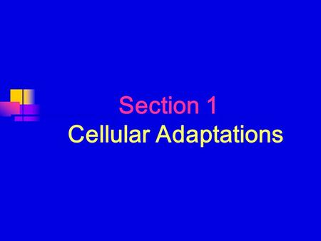 Section 1 Cellular Adaptations