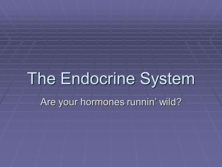 The Endocrine System Are your hormones runnin' wild?