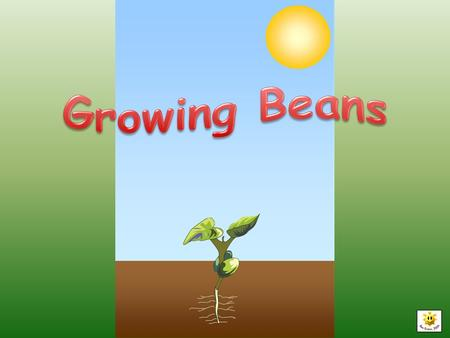 A bean is planted in the ground. It is dry and has a tough outer shell. It only takes a few things to make changes happen.