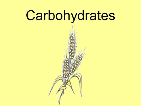 Carbohydrates. 1.We get most of our carbohydrates from the GRAINS group. 2.FRUITS and VEGETABLES are also a good source of carbohydrates. 3.Almost all.