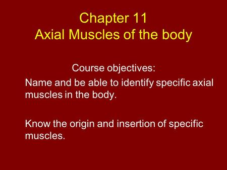 Chapter 11 Axial Muscles of the body