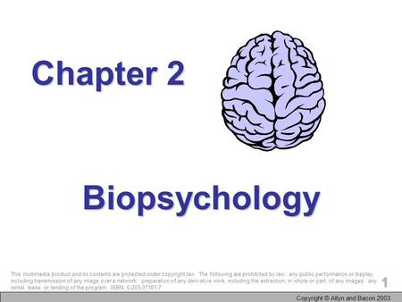 Copyright © Allyn and Bacon 2003 1 Biopsychology Chapter 2 This multimedia product and its contents are protected under copyright law. The following are.