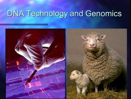 DNA Technology and Genomics. Recombinant DNA n Definition: DNA in which genes from 2 different sources are linked n Genetic engineering: direct manipulation.