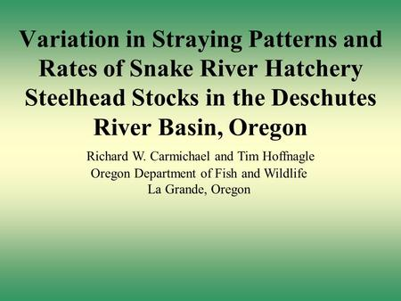 Variation in Straying Patterns and Rates of Snake River Hatchery Steelhead Stocks in the Deschutes River Basin, Oregon Richard W. Carmichael and Tim Hoffnagle.