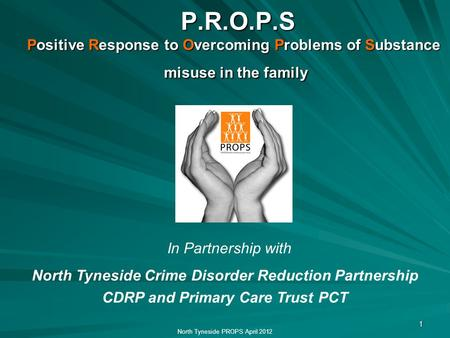 1 P.R.O.P.S Positive Response to Overcoming Problems of Substance misuse in the family P.R.O.P.S Positive Response to Overcoming Problems of Substance.