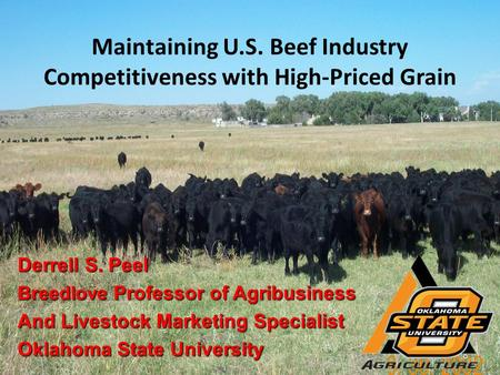 Maintaining U.S. Beef Industry Competitiveness with High-Priced Grain Derrell S. Peel Breedlove Professor of Agribusiness And Livestock Marketing Specialist.