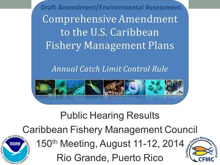 Public Hearing Results Caribbean Fishery Management Council 150 th Meeting, August 11-12, 2014 Rio Grande, Puerto Rico Draft Amendment/Environmental Assessment.