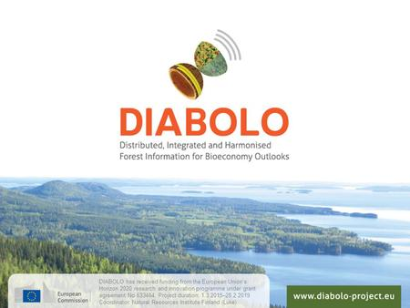 DIABOLO has received funding from the European Union's Horizon 2020 research and innovation programme under grant agreement No 633464. Project duration: