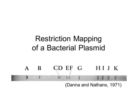 Restriction Mapping of a Bacterial Plasmid (Danna and Nathans, 1971)
